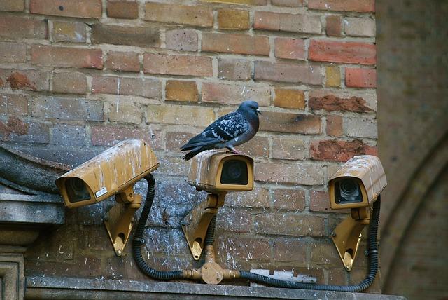 Technologie inwigilacji w miastach